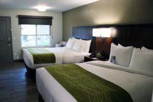 2 Queen Bedroom at Comfort Inn Antioch