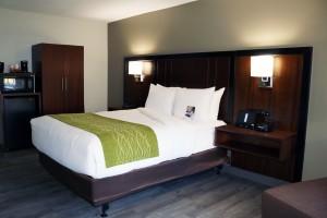 1 Queen Bedroom Accessible at Comfort Inn Antioch
