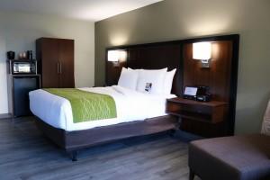 Comfort Inn Antioch - 1 Queen Bedroom - Comfort inn Antioch